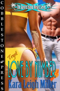 Love_By_Number_Kara_Leigh_Miller-700x1059