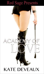 Academy of Love_cover art